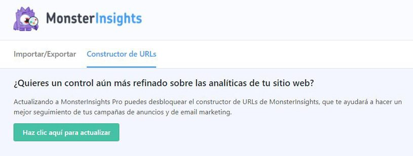 monsterinsights-constructor-urls
