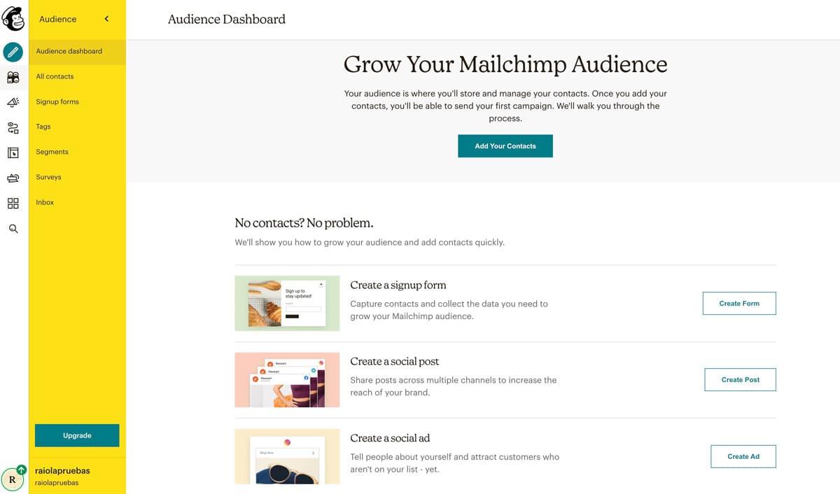 Crear audiencia en mailchimp